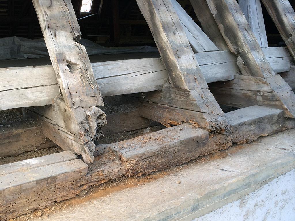 Kirche Neuenstadt Schadensbild Traufe Mauerlatte